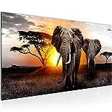 Bilder Afrika Elefant Wandbild Vlies - Leinwand Bild XXL Format Wandbilder Wohnzimmer Wohnung Deko Kunstdrucke Gelb Grau 1 Teilig -100% MADE IN GERMANY - Fertig zum Aufhängen 007612a