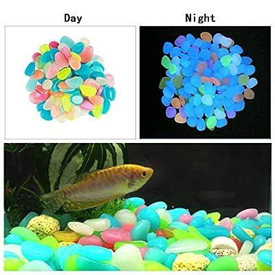 ZoomSky 200er Bunt Leuchtsteine, Dunkeln Leuchtende Kieselsteine Leuchtkiesel Floureszierende Pebble Steine für Aquarium Garten Flur Kinderzimmer Dekoration von ZoomSky - Du und dein Garten