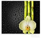 Wallario Herdabdeckplatte / Spitzschutz aus Glas, 1-teilig, 60x52cm, für Ceran- und Induktionsherde, Grüne Orchidee mit Bambus auf schwarz - Regentropfen