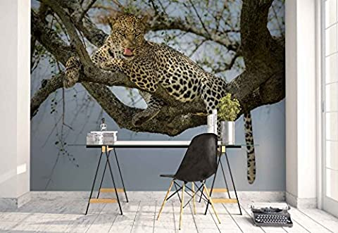 Vlies Fototapete Fotomural - Wandbild - Tapete - Leopard Tier Baum Ast - Thema Tiere - MUSTER - 104cm x 70.5cm (BxH) - 1 Teilig - Gedrückt auf 130gsm Vlies - 1X-1007032VEM