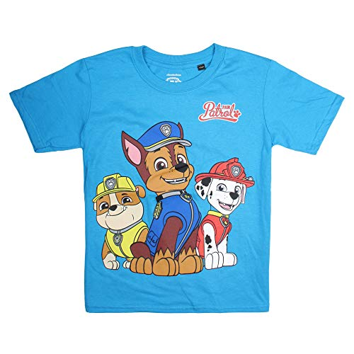 Paw Patrol Jungen T-Shirt Group, Blau (Sapphire Sap), 3-4 Jahre (Herstellergröße: X-Small)