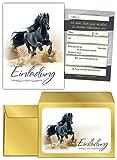 JuNa-Experten 8 Einladungskarten incl. 8 Umschläge Geburtstag Kinder Pferd für Mädchen Einladungen Kindergeburtstag Geburtstagseinladungen Kartenset Tiere