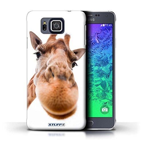 Kobalt® Imprimé Etui / Coque pour Samsung Galaxy Alpha / Chien ridicule conception / Série Animaux comiques Museau de giraffe