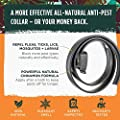 Simply Natural Anti Flea and Tick Collar 58cm All Natural Cinnamon Adjustable Anti Tick Collar Anti Flea Collar Dog and Cat Pest Control Collar from Simply Natural
