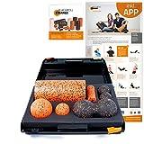 Blackroll Orange Die Faszienrolle - SMR-Set PRO, inkl. Koffer, Übungs-Poster und -Booklet