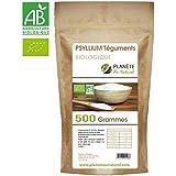 Psyllium Bio (téguments) - 500 gr