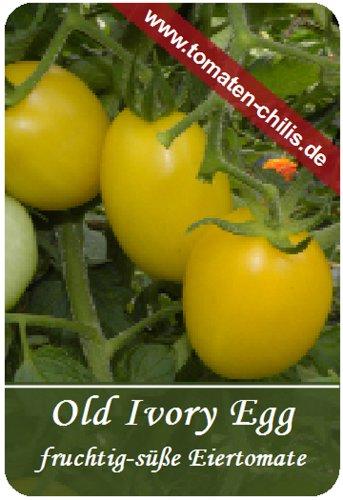Tomaten Samen - 15 Stück - Old Ivory Egg - Eiertomate