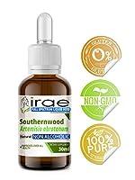 Southernwood Artemisia abrotanum Full Spectrum Non Alcoholic Liquid Extract 30ml