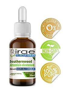 Southernwood Artemisia abrotanum Full Spectrum Non Alcoholic Tincture 30ml