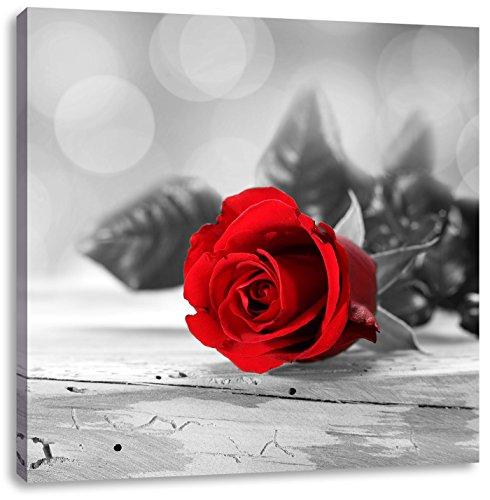 schöne Rose auf altem Holztisch schwarz/weiß, Format: 60x60 auf Leinwand, XXL riesige Bilder...