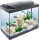 Tetra Regular Starter Line Aquarium-Komplettset mit LED-Beleuchtung stabiles 80 Liter Einsteigerbecken mit Technik, Regular Starterline, Futter und Pflegemitteln