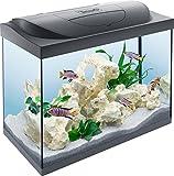 Tetra Starter Line Aquarium-Komplettset mit LED-Beleuchtung stabiles 80 Liter Einsteigerbecken mit Technik, Futter und Pflegemitteln