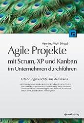 Agile Projekte mit Scrum, XP und Kanban im Unternehmen durchführen: Erfahrungsberichte aus der Praxis
