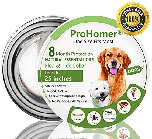 Collare per Pulci per Cani, Uccidere Zecche e Pulce in Modo Efficace, Impermeabile, Ajustable(63cm)