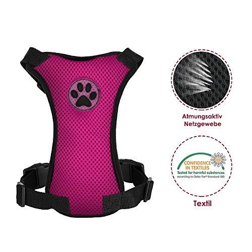 SlowTon Set di Cinture di Sicurezza per Cani Imbracatura per Animali Domestici con Cintura di Sicurezza per Viaggio e Uso Quotidiano Cinghia Elastica Regolabile e Gilet