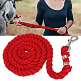 Sheens Corde di Piombo addensate da Cavallo in Corda di Cotone da 2m 20mm(Rosso)