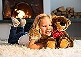 Stadlbauer by Fiducia Brummel der sprechende Bär Teddybär Stofftier Kuscheltier Plüschtier ca.40cm + Gratis Geschichten, Lieder und Gedichte als Download