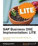 SAP Business ONE Implementation:LITE