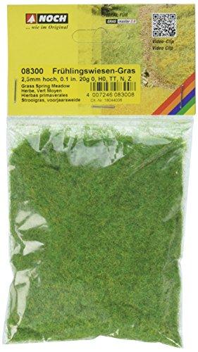 Gras (NOCH 08300 - Spielwaren, Streugras Frühlingswiese, 2.5 mm)