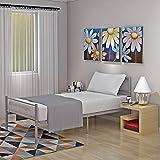 Keinode Einzelbett Rahmen 3Ft Metall Stahl Gestell Massiv Bettgestell Boden Modern Style Schlafzimmer für Kinder Kids Jugendliche Erwachsene Silber