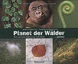 Planet der Wälder: Die grünen Paradiese der Erde