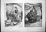 Copie antique des croquis irlandais multipliant les plants de pommes de terre à la maison de transport de volaille 1888