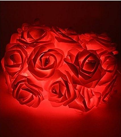 Morbuy Lichterketten, 20LED/30LED/40LED/50LED Rosen Blumen feenhafte String Lights für Hochzeit Festival Garden Party Weihnachtsdekoration Zubehör (4M/40LED, Rot)