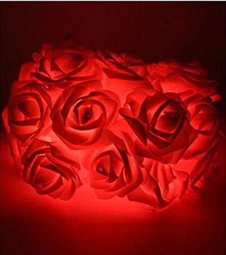 Morbuy Lichterketten, 20LED/30LED/40LED/50LED Rosen Blumen feenhafte String Lights für Hochzeit Festival Garden Party Weihnachtsdekoration Zubehör (3M/30LED, Rot)