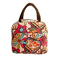 Manadlian Lunch Bag, Thermal Insulated Picnic Tote Lunch Cool Bag Cooler Box Handbag Pouch (12.6*8.69*3.95inch, Multicolor)