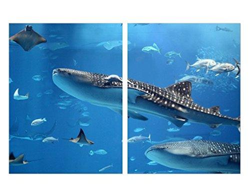 Apalis Eckleinwandbild Fish In The Sea 1:1, Kante:Innenecke, 100cm x 150cm