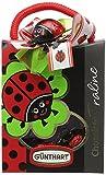 Gunthart Ladybird Bag Filled with Choclate Beetles