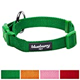 Blueberry Pet New Buckle Better Basic Dog Collar in Light Emerald Green, Neck 37cm-50cm, Medium, Collars for Dogs, Matching Lead & Harness Available Separately