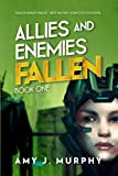 Allies and Enemies: Fallen, Book 1 (Allies and Enemies Series) (English Edition)