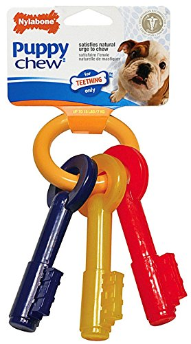 Nylabone Puppy Teething Keys, Small 51RptuQU OL