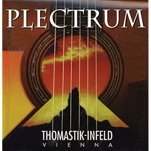 Thomastik AC014 PLECTRUM Acoustic Bronze, Flatwound (sin níquel), 12 string