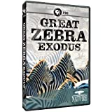 Nature: Great Zebra Exodus by PBS (DIRECT) by Chris Morgan
