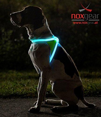Noxgear LightHound  (L) - 2