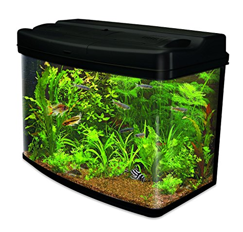 Interpet fish pod glass aquarium including cartridge for Amazon fish tank filter
