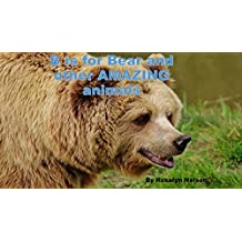 B is for Bear and other AMAZING animals