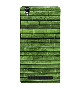 Fuson Designer Back Case Cover for Intex Aqua Power Plus :: Intex Aqua Power + (Green bamboo theme)