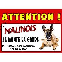 MALINOIS AFFICHE PLASTIFIÉE ATTENTION AU CHIEN ANIMAUX CADEAUX DOG HUND