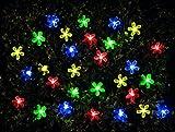 Gardenwize Outdoor Garden 100 LED Solar Multi-Coloured Flower String Lights
