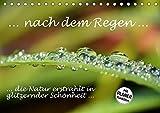 ... nach dem Regen ... die Natur erstrahlt in glitzernder Schönheit (Tischkalender 2018 DIN A5 quer): Regentropfen auf Blüten und Blättern - glitzernd ... [Kalender] [Apr 01, 2017] GUGIGEI, k.A.