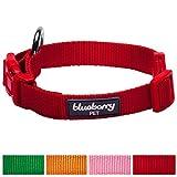 Blueberry Pet Neue Schnalle Halsbänder für Hunde 1 cm XS Better Basic Klassisches Einfarbiges Hundehalsband in Rouge-Rot