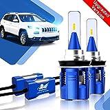 2X H11 LED Auto Scheinwerfer Birnen Kit - Winpower - LED Licht Umbausatz 12V (Eingebaut Canbus) Auto/KFZ / Fahrzeug Hell Ersetzt Halogen/HID Lampen