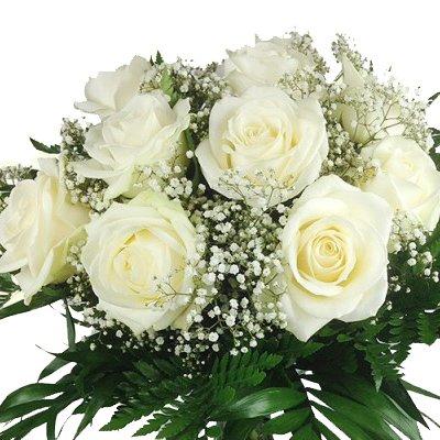 floristikvergleich.de XL Blumenstrauß weiße Rosen – Aufgebunden mit Schleierkaut und Schnittgrün