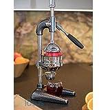 Juice XL Professionale Extractor Juicer, Leva Juicer Estrattore Arancione Melograno,Argento