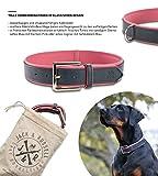 Jack & Russell Premium Leder Hunde Halsband Lilly - Leder Halsband Zwei Farben gesteppt - echtes Leder div. Farben Hudehalsband Lilly (S, Blau/Pink)