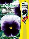 Stiefmütterchen 'Weseler Eis® 'Blau-Lasur' blau / oben weiß , sehr frühblühend, frosthart, großflächige Farbentwicklung, zweijährig ( mit Stecketikett) 'Viola wittrockiana '