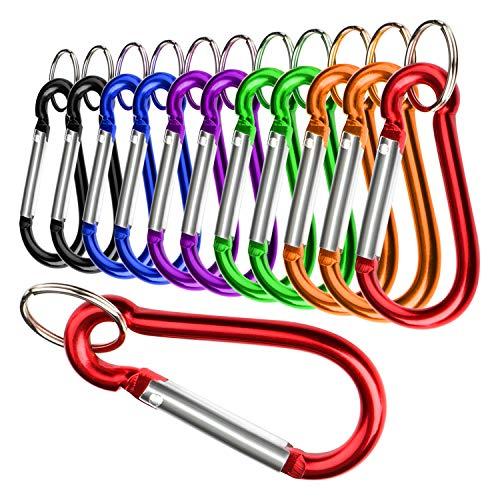 com-four® 12x Jeu de mousquetons, Mousqueton en Aluminium, Mousqueton avec Porte-clés de différentes Couleurs (12 pièces - Petites)